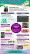 Trichoderma Virens 159c: A Green Solution In Controlling Ganoderma Basal Stem Rot Of Oil Palm (ITEX 2017)